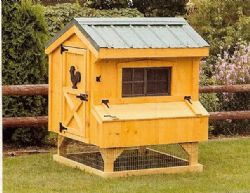 3x4 Quaker Chicken Coop